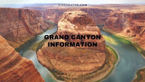 grand canyon information