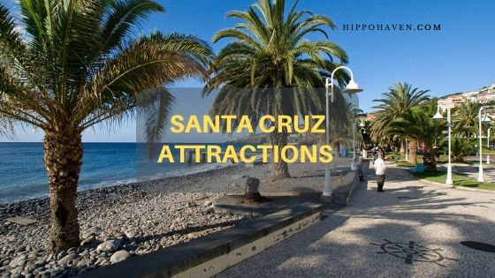 santa cruz attractions