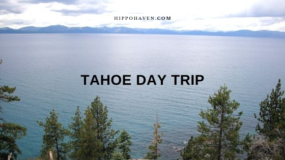 tahoe day trip