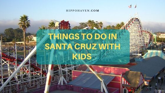 things to do in Santa Cruz with kids