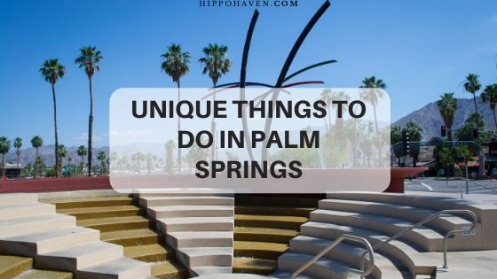 unique things to do in palm springs