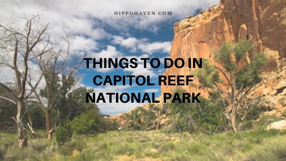things to do in Capitol Reef National Park
