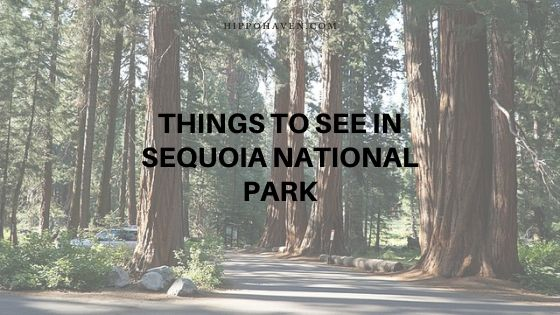 things to see in sequoia national park