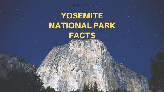 Yosemite national park facts