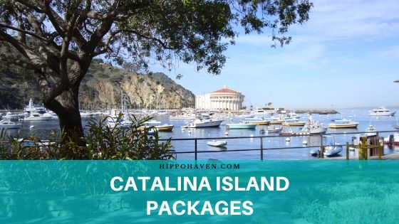 Catalina Island Packages