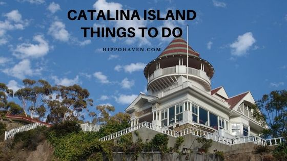 Catalina island things to do