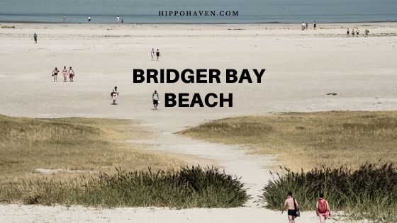 bridger bay beach