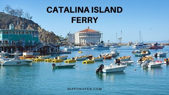 catalina island ferry