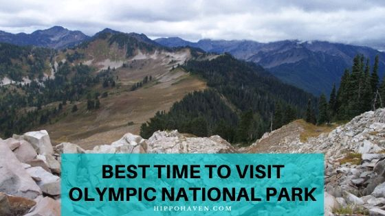 best time to visit Olympic national park
