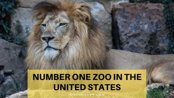 number one zoo in the united states