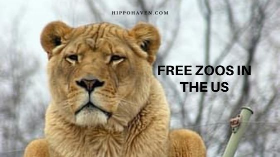 Free Zoos in the US