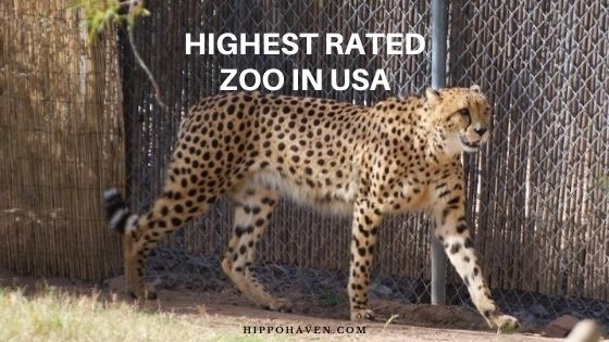highest rated zoo in usa