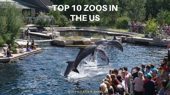 top 10 zoos in the us