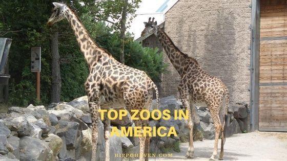top zoos in America